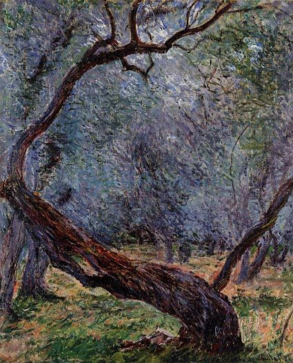 Olive Trees Study, Claude Monet