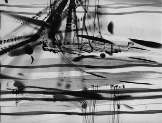 Roger Humbert Untitled (Luminogramm) 1955